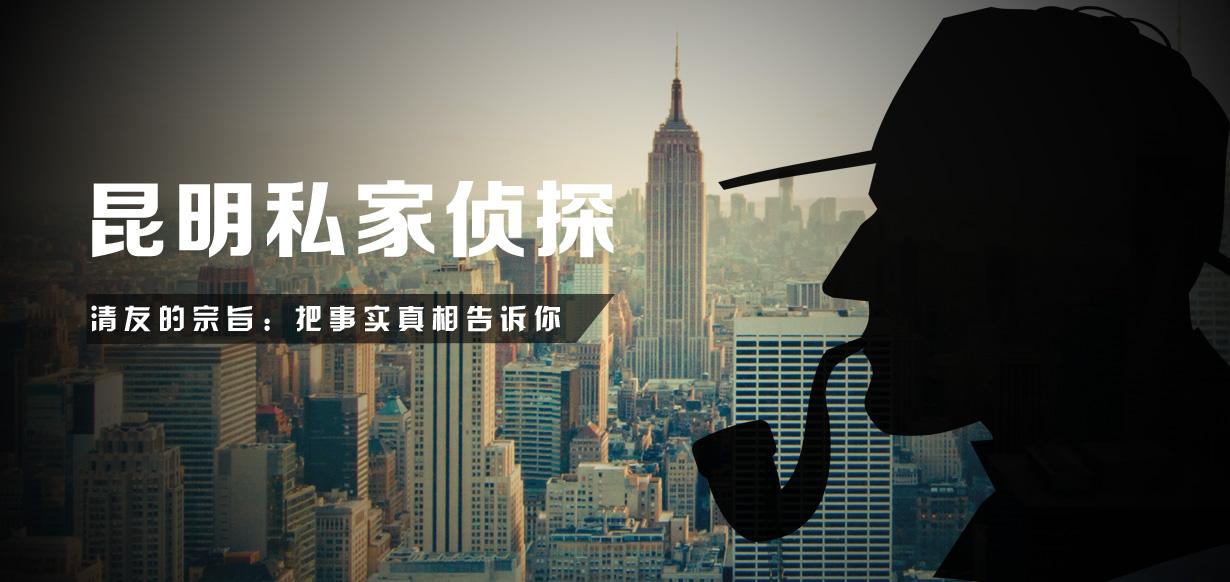 个人侦探公司